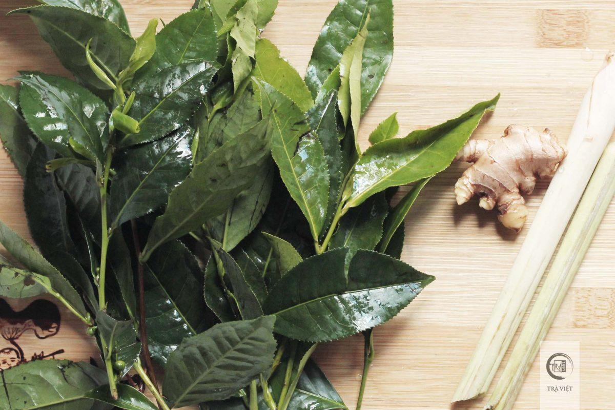 Cách nấu trà xanh - chuẩn bị