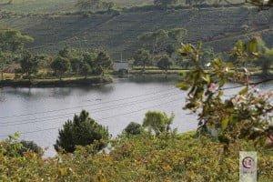 Đồi trà ô Long Bảo Lộc - Hồ trữ nước