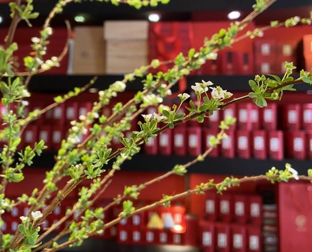 showroom bán trà làm quà tết